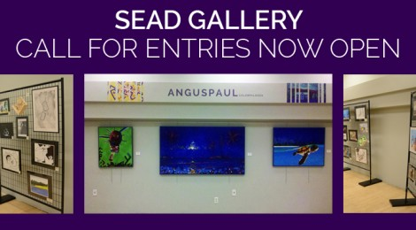 SEAD Gallery Call for Entries Now Open