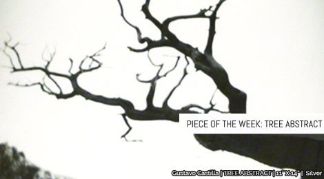 Piece of the Week: Tree Abstract