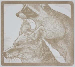 Mirka Hokkanen AnimalPyramidRaccoon