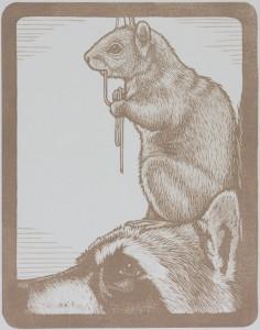 Mirka Hokkanen AnimalPyramidSquirrel