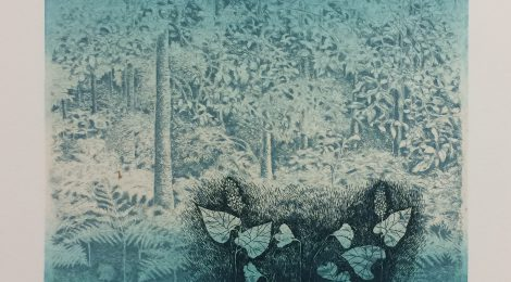 How did she do that? A look into Inari Krohn's printmaking process
