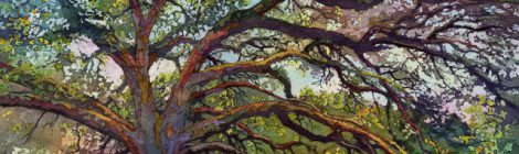 "SEAD Gallery Welcomes ""Into the Woods"""